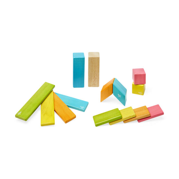 Tegu Magnetic Wooden Block Set in color
