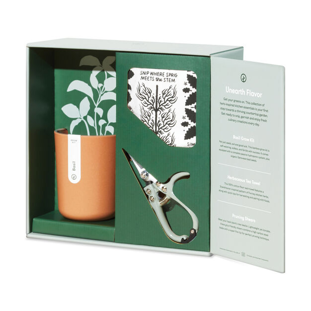 Modern Sprout Plant Gift Sets in color Green