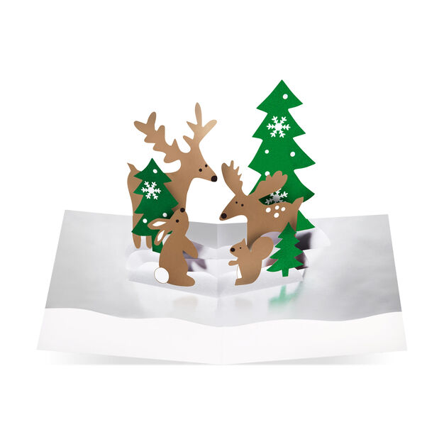 Holiday Evergreen Holiday Cards (Box of 8) in color