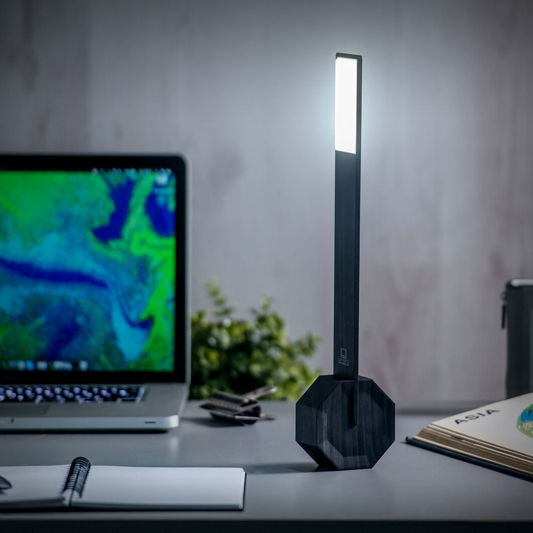 Octagon Portable Desk Light in color Black
