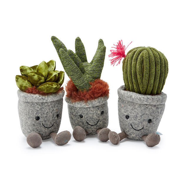Silly Succulent Plushes in color Cactus