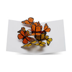 Fluttering Butterflies Pop-Up Note Card in color