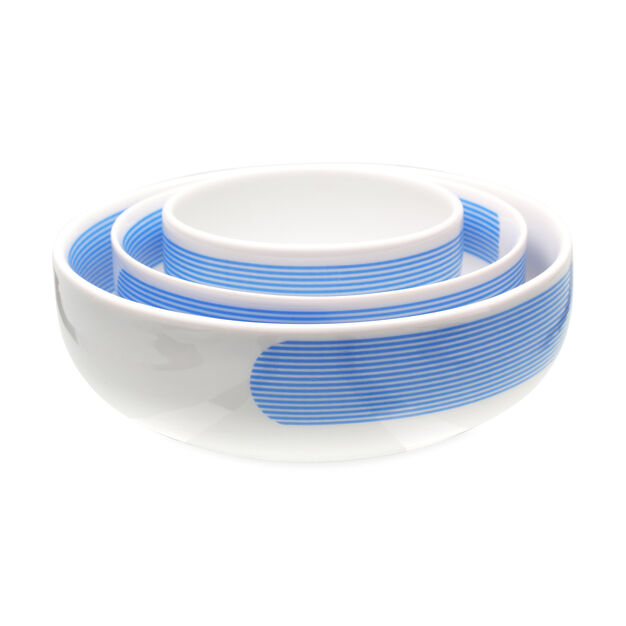 Striped Atelier Bowl Set in color