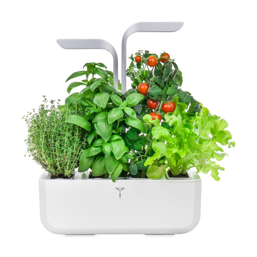Veritable® Smart Indoor Garden in color