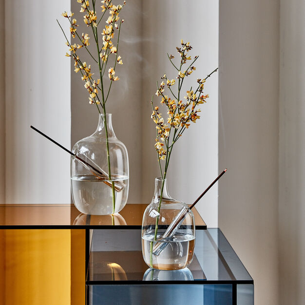 Hanami Bud Vases in color Transparent
