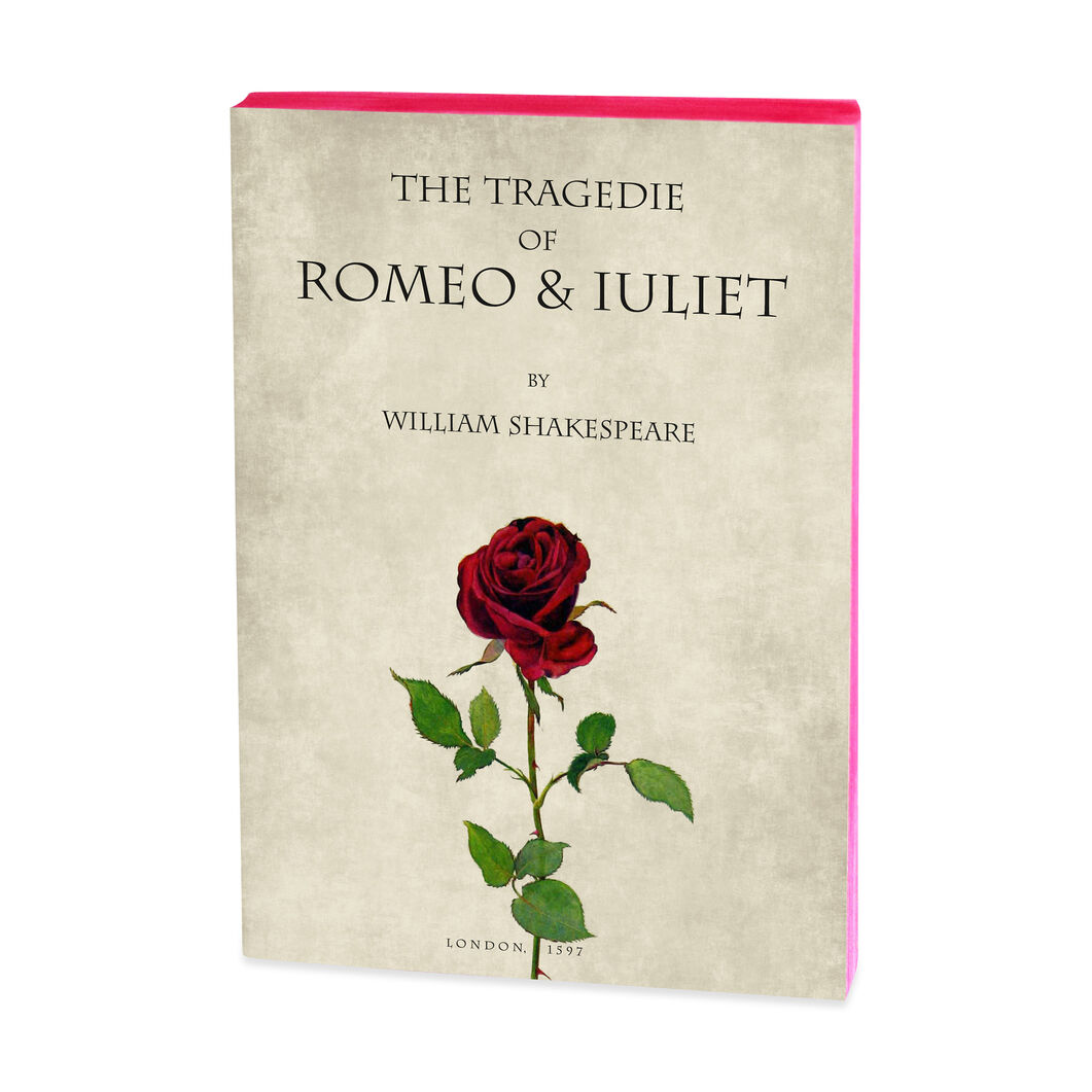 Romeo and Juliet Notebook in color