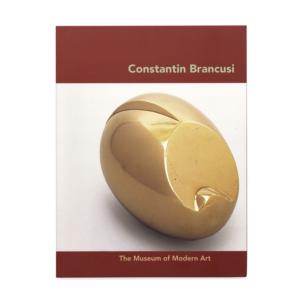 Constantin Brancusi in color
