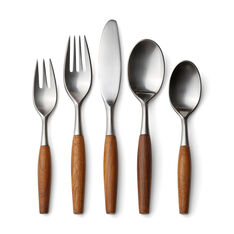 Fjord Teak Flatware - Set of 5 in color