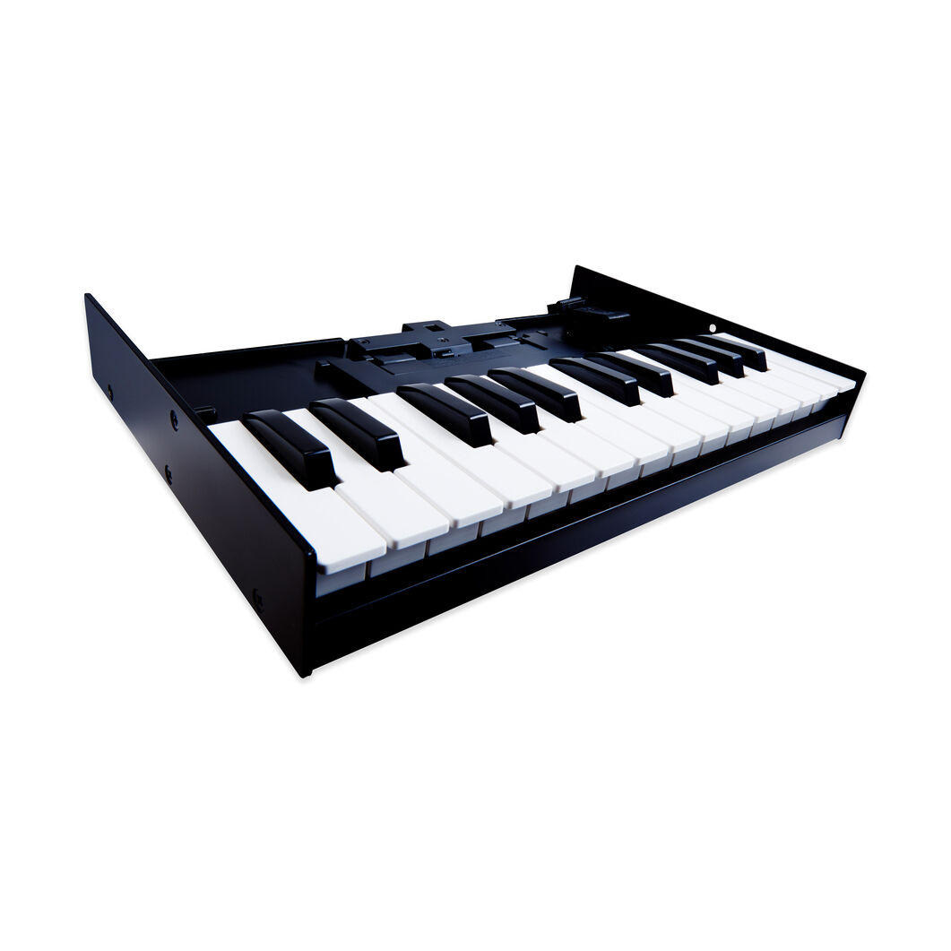 Keyboard Unit for Roland Boutique K-25M in color