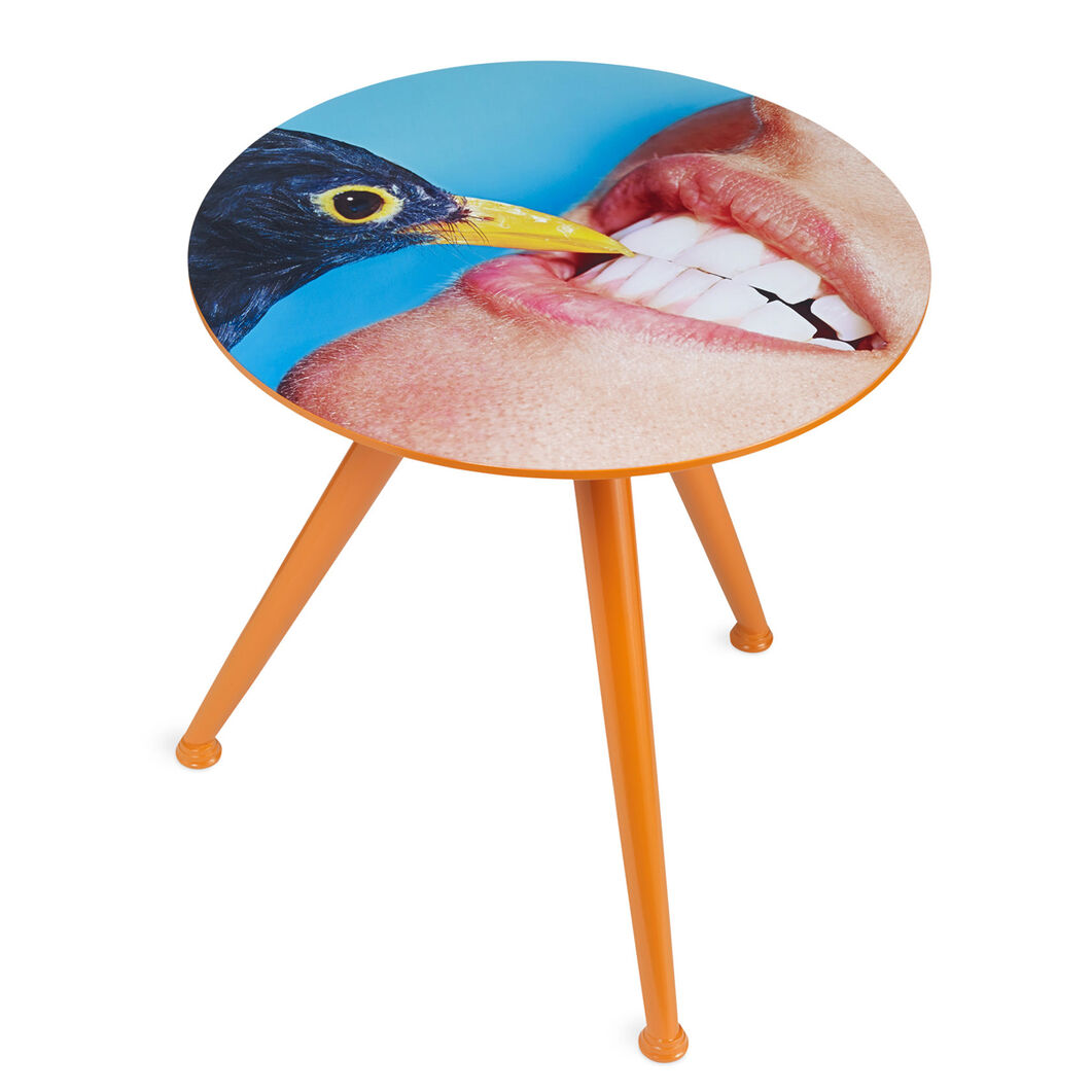 Cattelan  Ferrari  and Seletti: Bird Table in color