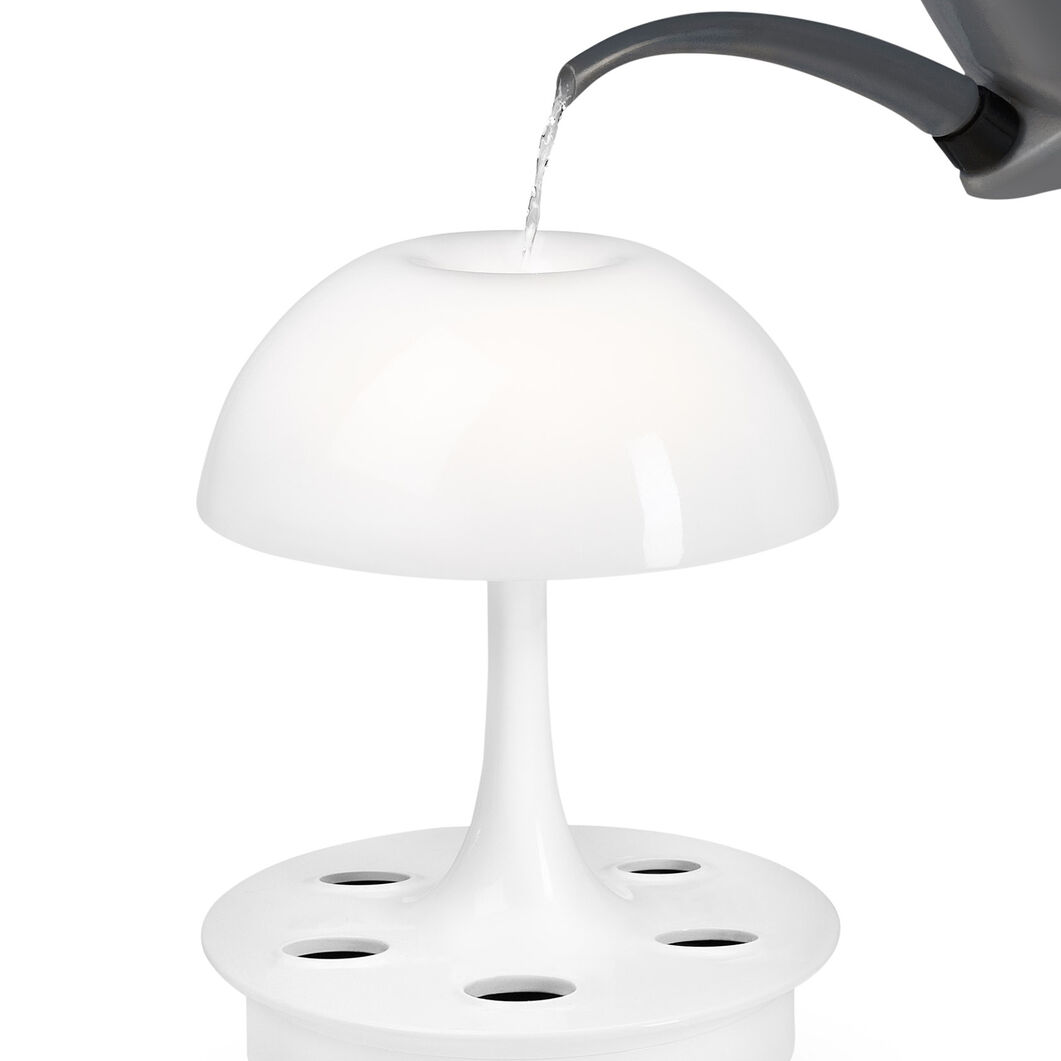 Ambienta Table Lamp in color