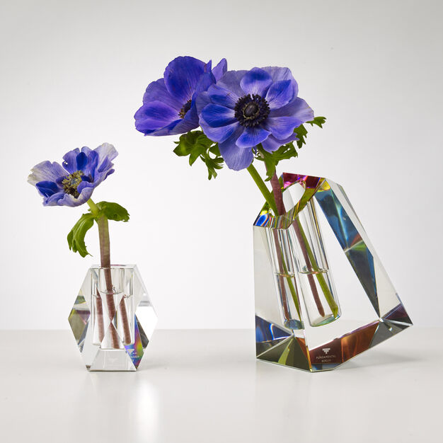 Irregular Crystal Vase in color Multi