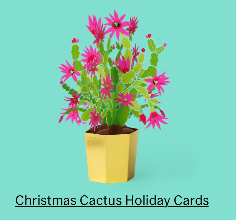 Christmas Cactus Holiday Cards